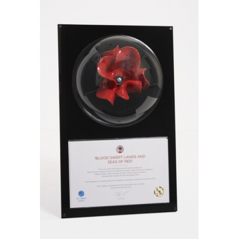 Tower Of Lomdon Wall Mounted Domed Poppy Display Case