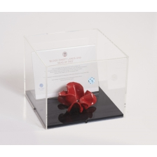 Large Poppy Display Case