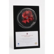 Wall Mounted Domed Poppy Display Case